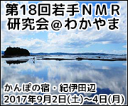 The 17th Wakate NMR Meeting